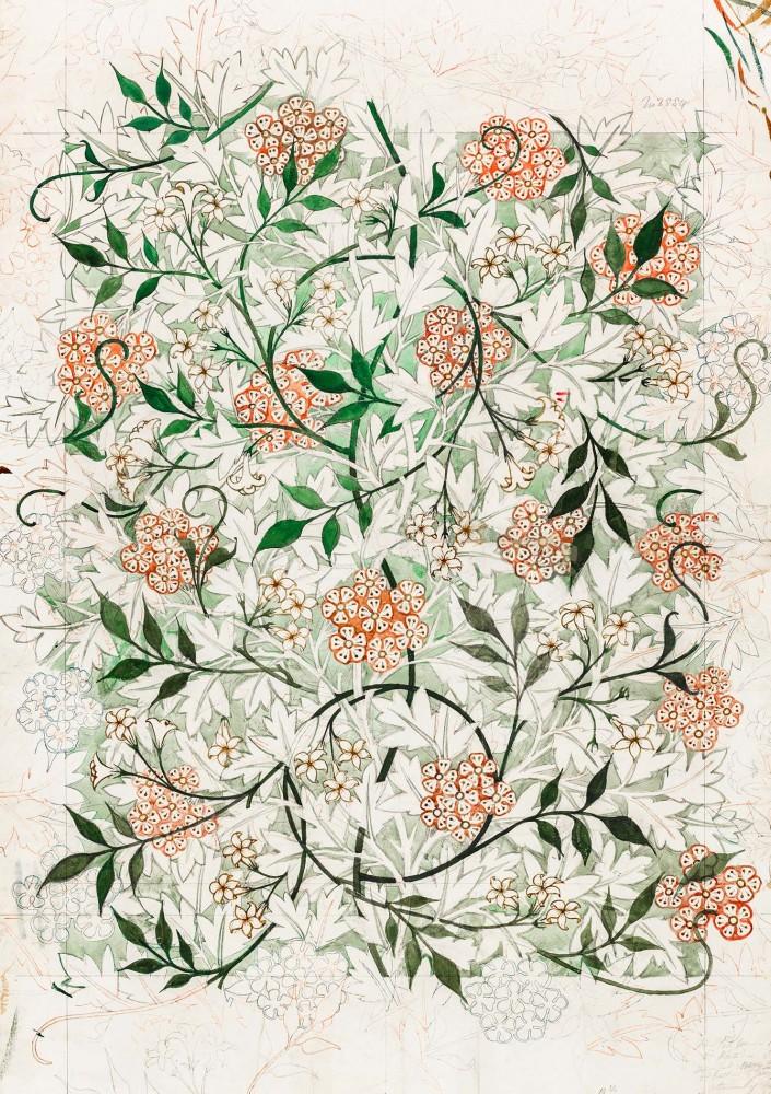 Obraz na płótnie Jasmine autorstwa Williama Morrisa