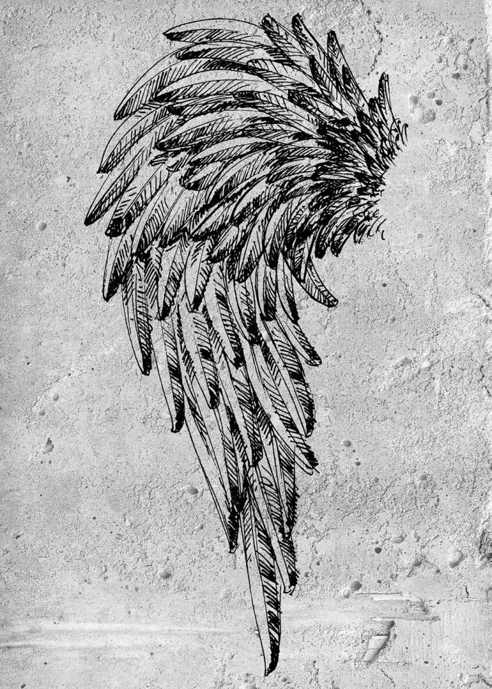 Skrzydło anioła na betonowym tle