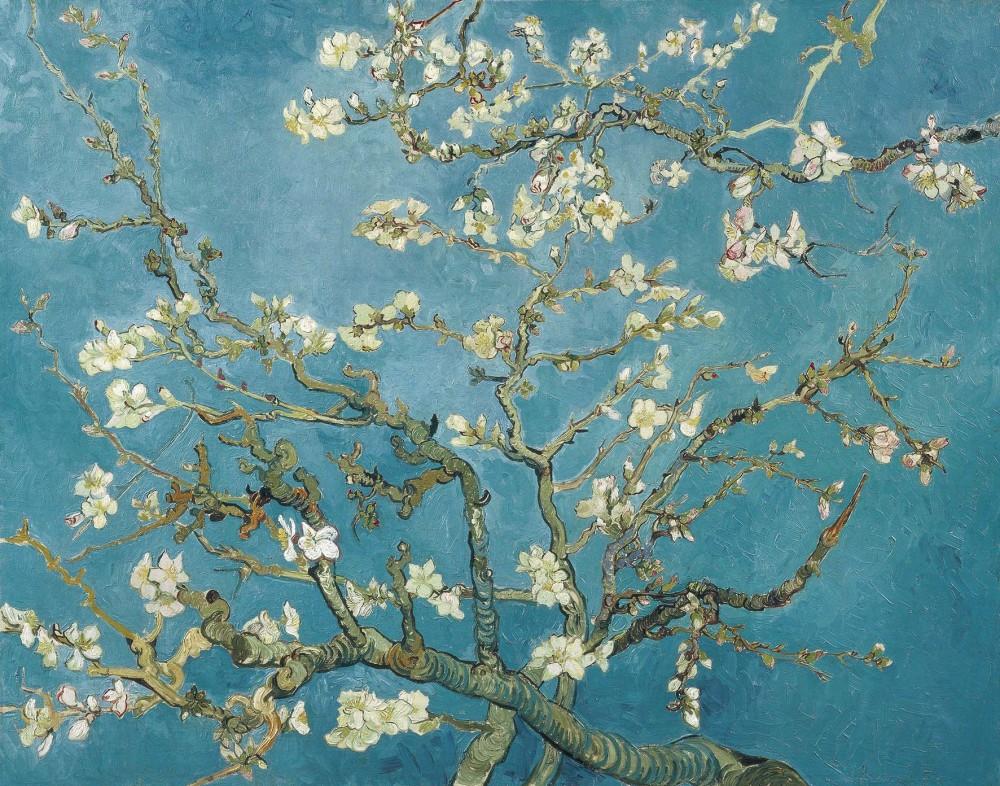 Obraz na płótnie Vincenta van Gogha Kwiat migdałów